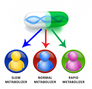 METABOLIZERS